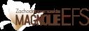 Logo Zachodniopomorskich Magnolii